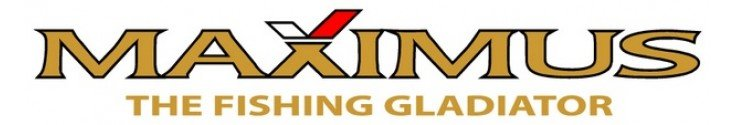 Спиннинг Maximus Ichiro L 2.2m/ 2-9gr